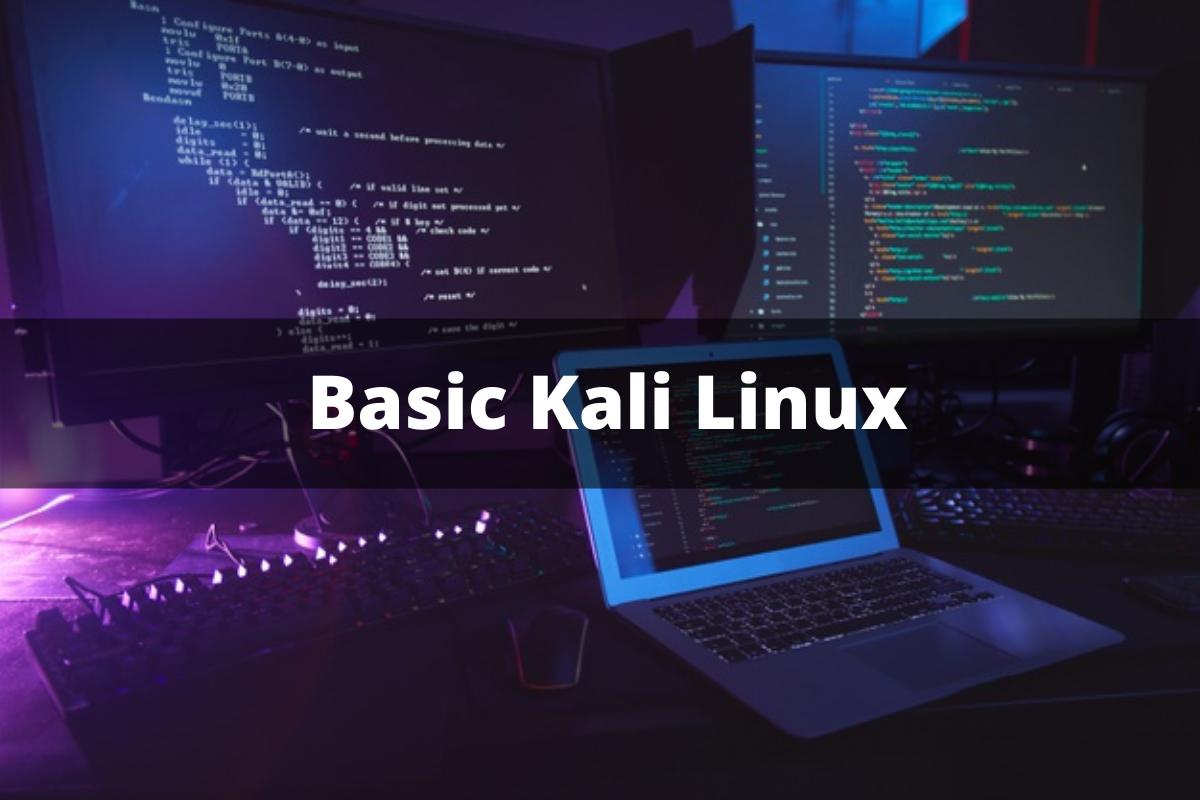 Basic Kali Linux